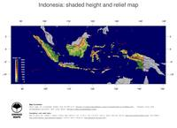 #5 Map Indonesia: color-coded topography, shaded relief, country borders and capital