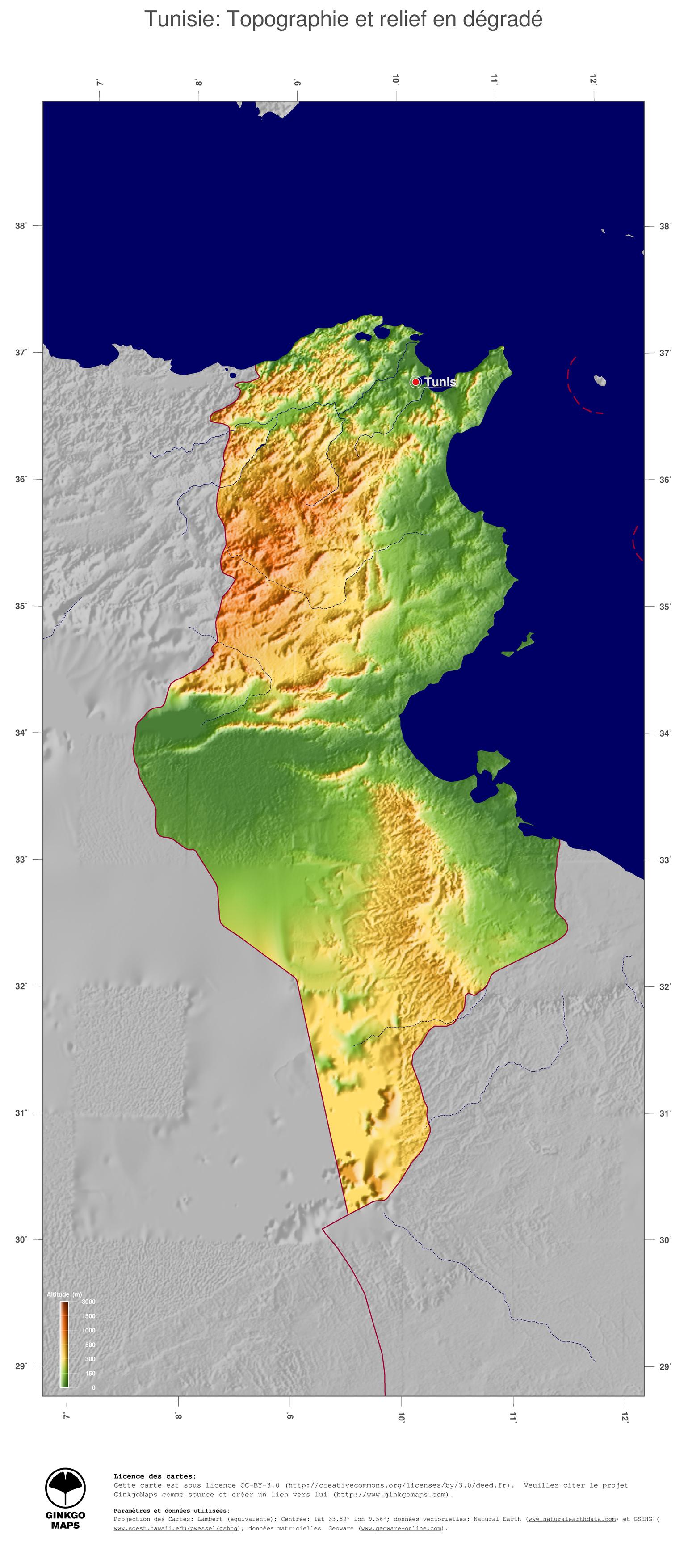 relief-de-la-tunisie